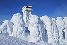 'South Baldy Amphitheater' by Donald Sewell on Capture Inland Northwest // Giant Snow Hoodoos atop South Baldy WA all appear to be facing and listening to the Fire Lookout Tower tell yet another story of warmer times to come. :) Print ID Lookout Tower, Winter Scenes, North West, Mount Everest, Thankful, Fire, Snow, Travel, Outdoor
