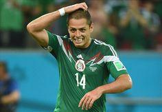 Vidic urges Inter to bid for Hernandez
