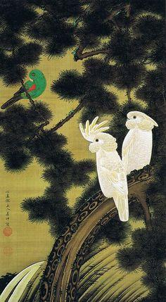 若冲 老松鸚鵡図(ろうしょうおうむず)