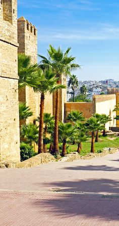 City wall from old Rabat in Morocco, Africa    |    20 Photos that Prove Morocco is a Dream Destination