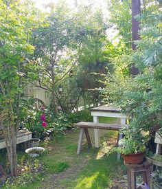 いいね!2,924件、コメント27件 ― @sho.candyのInstagramアカウント: 「. 晴れたときのお庭 洗面器の中には息子が捕ってきた生物が入ってます。たぶん…(○_○) . 今日は涼しくて過ごしやすい1日になりそう♪ . 2016.6.25…」 Garden Nook, Love Garden, Garden Cottage, Dream Garden, Little Gardens, Small Gardens, Outdoor Gardens, Small Space Gardening, The Secret Garden
