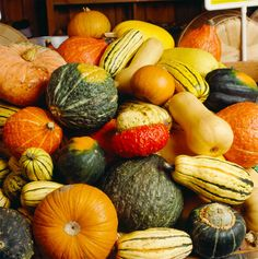 Gourmet's complete guide to #fall and #winter #squash, from #Acorn to #Turban