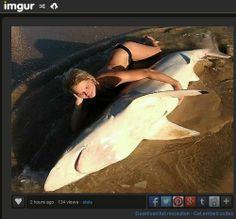 Jovem posa com tubarão morto e leva a alerta de autoridades - Fernando Moreira: O Globo