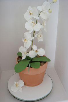 gâteau pour une fan d'orchidée