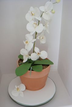 Orchid Cake by marthamakescakes