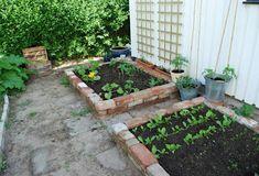 Ideas Apartment Patio Garden Veggies Raised Beds For 2019 Pea Gravel Patio, Backyard Patio, Backyard Landscaping, Brick Garden, Glass Garden, Green Garden, Raised Garden Beds, Raised Beds, Apartment Balcony Garden