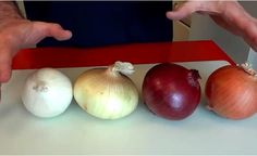 With all the different types of onions out there, it's hard to know what's what! Picking out the wrong type of onion could be the difference between a masterpiece of a meal, and a complete nightmare. Luckily, silly Chef Buck is here to guide us Types Of Onions, Salud Natural, Varicose Veins, Wine Making, Natural Cures, Natural Beauty, Popular Recipes, Ww Recipes, Onion Recipes