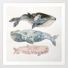 Stacked+Watercolor+Whales+Art+Print+by+Brigit+Juarez+-+$20.80
