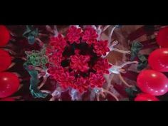 Lilit Hovhannisyan - De El Mi [Trailer] - YouTube