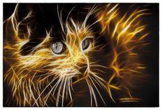 Feline Fractalius by Cynthia Mathre Thayer, via 500px