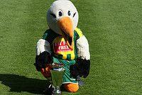 Storky is de mascotte van ADO