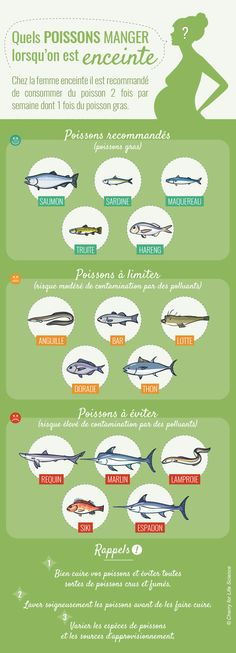 infographie grossesse poisson pendant la infographie poisson pendant la grossesseYou can find Tips to get pregnant and more on our website All About Pregnancy, Pregnancy Tips, Mom And Baby, Baby Love, Jogging Stroller, Pregnancy Nutrition, Baby Coming, Breastfeeding Tips, Getting Pregnant