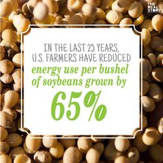 Soybeans are another product produce by the agriculture industry in the US. However, with the big numbers being produced it is good to know that it helps feed the world rather than hurt it by using too much energy, In the last 25 years, U.S. farmers have reduced energy use per bushel of soybeans grown by 65%! Happy Earth Day