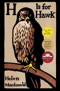 """How a Hawk Clarifies Love and Loss, Beauty and Terror, Control and Surrender - """"The world is full of signs and wonders that come, and go, and if you are lucky you might be alive to see them."""""""