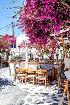 Mykonos Greece in 20 Photos Crete Greece, Santorini Greece, Athens Greece, Greece Photography, Mykonos Town, Mykonos Island, Europe Holidays, Venice Travel, Greece Islands