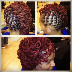 This almost looks like MY hair! -->Vibrant red flat twisted and curled locs by NappStar. Dreadlock Styles, Dreads Styles, Twist Braid Hairstyles, Dreadlock Hairstyles, Twist Braids, Thick Wavy Haircuts, Modern Haircuts, Short Permed Hair, Curly Short