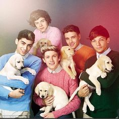 Can I just say the before this came out I bought a light pink sweater like Harry's....just saying