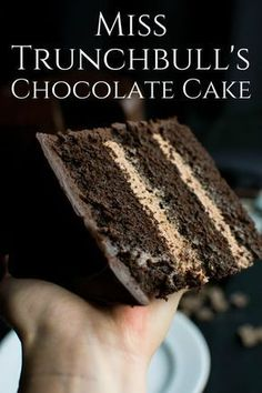 Schildkröte-Schokoladen-Torte Food: Cakes & Sweets – makeup - New ideas Food Cakes, Cupcake Cakes, Baking Cakes, Bread Baking, Baking Soda For Baking, Easy Appetizer Recipes, Dessert Recipes, Recipes Dinner, Just Desserts