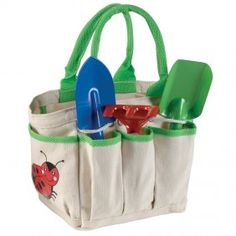 Garden tote and tools
