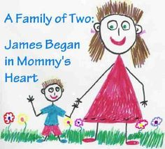 A Family of Two: James Began in Mommy's Heart: single mom books (Single Mothers by Choice - The Happy Family Children's book collection 3) by Elizabeth Reed,
