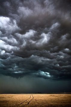 """""""Looking forward to the storm. Keeps everyone inside. Washes everything clean."""""""