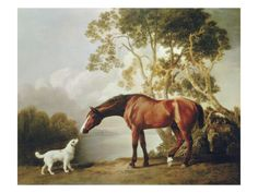 """Bay Horse & White Dog"" by George Stubbs. Giclee prints starting at $39.99."