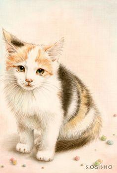 金平糖 Cat Drawing, Painting & Drawing, Animal Paintings, Animal Drawings, I Love Cats, Cute Cats, Cat Character, Raining Cats And Dogs, Watercolor Cat