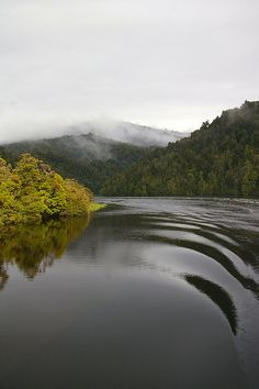 Tasmanian Wilderness, Tasmania, Australia