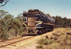 "RM 64 on a Rail Tourist Association tour on the up approximately between Smythesdale and Haddon on the ""up"" on Sunday the of February Flora And Fauna, Vr, February, Sunday, Victoria, Tours, Australia, Landscape, Domingo"