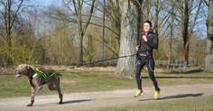 Journaliste accro à ses baskets et à son chien Lupo, Lo est une adepte du canicross. Présente à la Wamiz Run le 26 mars prochain, la fondatrice du blog Bête de Course vous livre tous ses conseils pour bien démarrer ce sport !