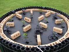 Interesting way to grow peppers. Keep the heat overnight