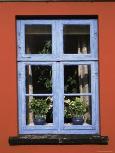 Blue and orange = A window that you couldn't just walk by without smiling