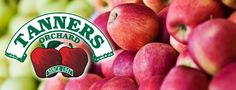 Apple Chart - Tanners Orchard - Apples and Cider in Central Illinois