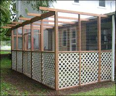 outdoor cat pen - a catio. This would also be great as a bird aviary/flight pen, a rabbit enclosure, chicken run, etc. I can picture a beautiful white peacock in this! get some yourself some pawtastic adorable cat apparel!