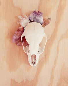 crystal skull @DeAnne Schlegel made me think of you and a rad country home :)