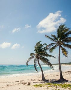 What you've been waiting for. #cozumel #beach