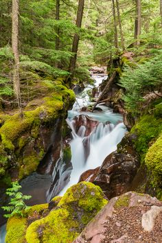 Top 3 Short Hikes in Glacier National Park | GI 365 www.facebook.com/loveswish