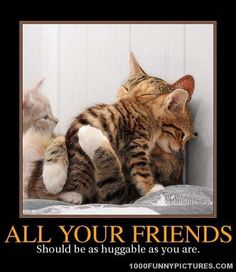 All Your Friends – Demotivational Posters
