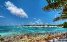 """""""Playa Akumal"""" by Pixamundo Cancun, Tulum, Mayan Cities, Bondi Beach, Screensaver, Lake Michigan, Riviera Maya, Night Life, Beaches"""
