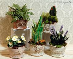 Planters made from plastic bottle caps