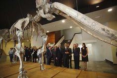Presidenta Cospedal inaugura Museo Ciudad Real-3