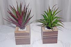 Vaso em MDF com cacto artificial, pode ser usado na decoração ou como em lembrancinhas. R$ 25,00