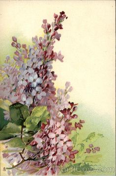 Painting of Pretty Lilac Blossoms