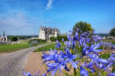 Day Trip to Loire Valley Castles: Chambord, Chenonceau, Amboise Chambord, Beautiful Castles, Beautiful Architecture, Day Trip, Acre, Golf Courses, France, Paris, World
