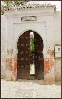 Secret garden, Fez, Morocco