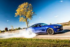 All-Star: 2015 Ford Mustang GT