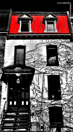 St ELIZABETH STREET, MONTREAL Places To Travel, Places To See, Montreal Architecture, Elizabeth Street, Montreal Ville, Laval, Quebec City, The Province, Places Of Interest