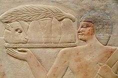 Sakkara, Tomb of Kagmeni, Ancien Egypt, 6th Dynasty.