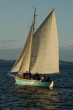 Port Hadlock WA - Boat School - Swedish Kog under sail on sea trials