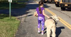 Her School Is Being Sued Because Of This Service Dog. The Plaintiff? Unbelievable... PACK BUDDY REHABILITATES RESCUE/SHELTER DOGS TO SERVE AS SERVICE DOGS FOR CIVILIANS AND, FREE, FOR U.S. VETERANS. SAVE A DOG, SAVE A VETERAN. David Utter, Dog Trainer: Separation Anxiety, Service & Therapy Dogs, PTSD, Depression, Panic Attacks, Behavior Modification, Water Rescue, Obedience. Train and Board. (www.DogEvolution.us) (http://dogtrainingorangecountyca.com/)www.DavidUtter.com (www.Pack-buddy.com)…